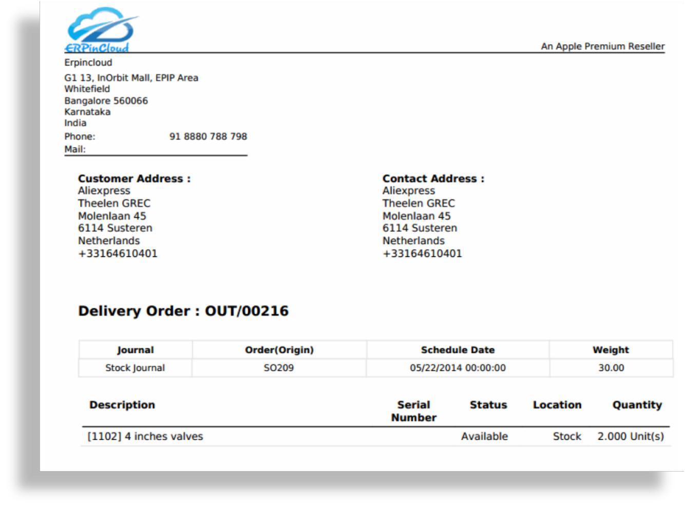 Cloud ERP Delivery Order